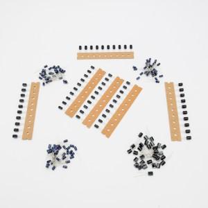 Set Condensatori elettrolitici miniatura